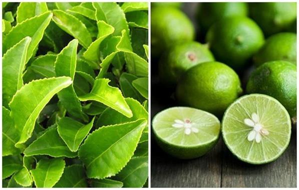 Cách giảm mỡ bụng bằng chanh và lá trà xanh